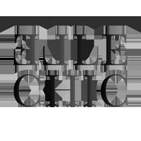 Elle Chic logo